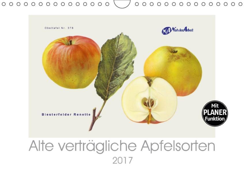 Alte verträgliche Apfelsorten (Wandkalender 2017 DIN A4 quer) - Coverbild