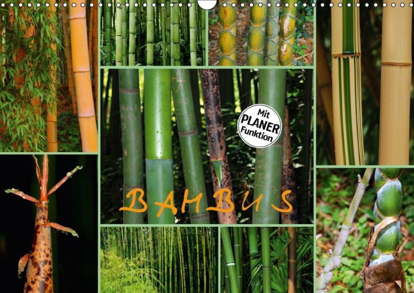 BAMBUS (Wandkalender 2017 DIN A3 quer) - Coverbild