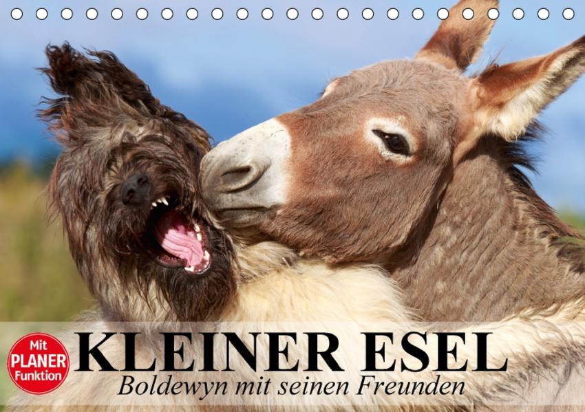 Kleiner Esel. Boldewyn mit seinen Freunden (Tischkalender 2017 DIN A5 quer) - Coverbild