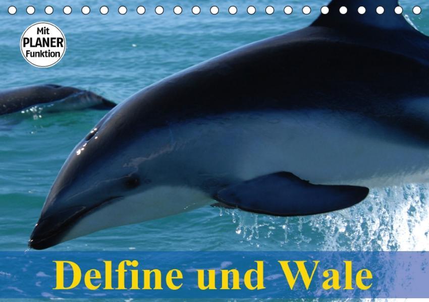 Delfine und Wale (Tischkalender 2017 DIN A5 quer) - Coverbild