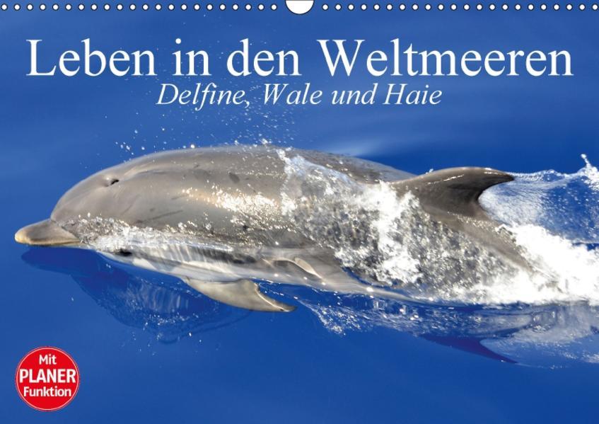 Leben in den Weltmeeren. Delfine, Wale und Haie (Wandkalender 2017 DIN A3 quer) - Coverbild
