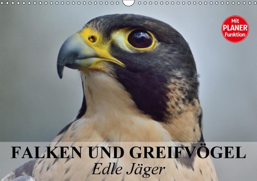 Falken und Greifvögel - Edle Jäger (Wandkalender 2017 DIN A3 quer) - Coverbild
