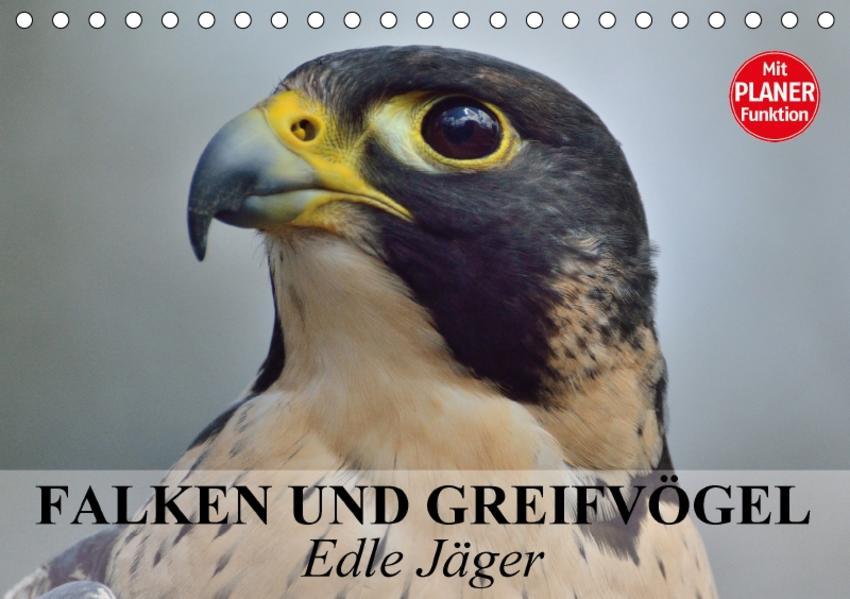 Falken und Greifvögel - Edle Jäger (Tischkalender 2017 DIN A5 quer) - Coverbild