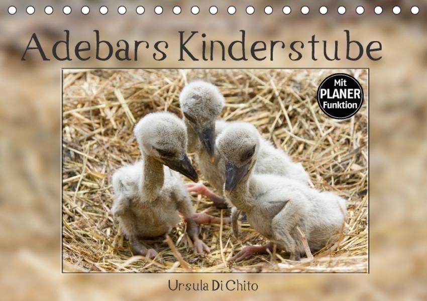 Adebars Kinderstube (Tischkalender 2017 DIN A5 quer) - Coverbild
