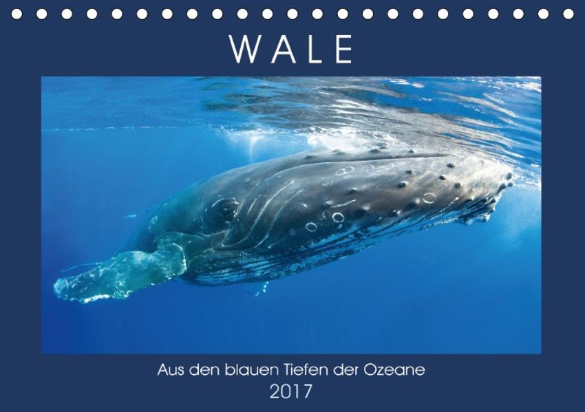 Wale: Aus den blauen Tiefen der Ozeane (Tischkalender 2017 DIN A5 quer) - Coverbild