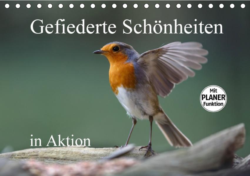 Gefiederte Schönheiten in Aktion (Tischkalender 2017 DIN A5 quer) - Coverbild