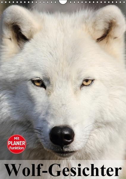 Wolf-Gesichter (Wandkalender 2017 DIN A3 hoch) - Coverbild