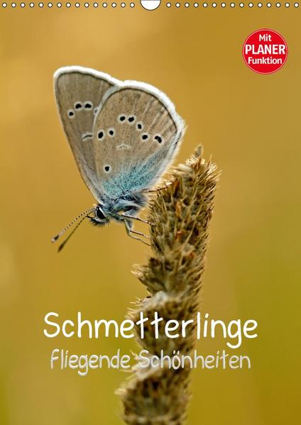 Schmetterlinge - fliegende Schönheiten (Wandkalender 2017 DIN A3 hoch) - Coverbild