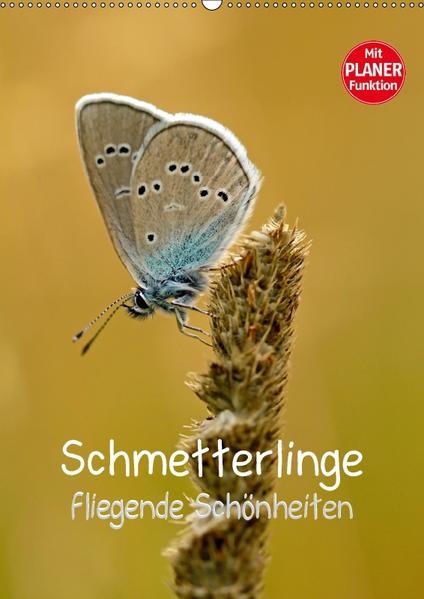 Schmetterlinge - fliegende Schönheiten (Wandkalender 2017 DIN A2 hoch) - Coverbild