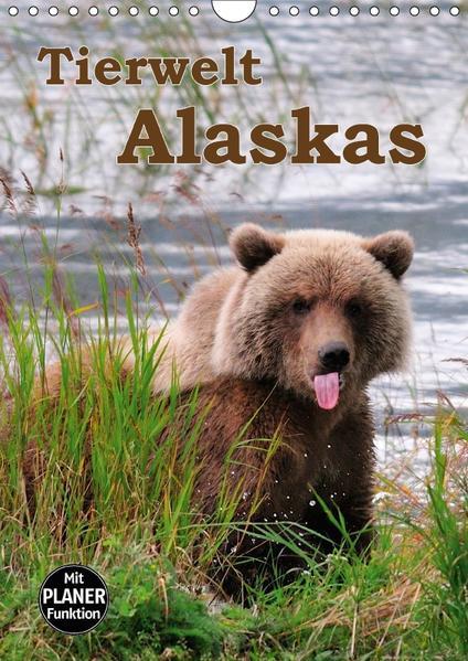 Tierwelt Alaskas (Wandkalender 2017 DIN A4 hoch) - Coverbild