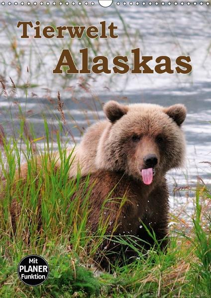 Tierwelt Alaskas (Wandkalender 2017 DIN A3 hoch) - Coverbild