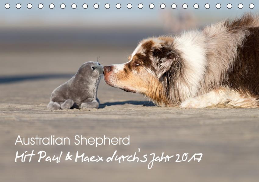 Australian Shepherd 2017 (Tischkalender 2017 DIN A5 quer) - Coverbild