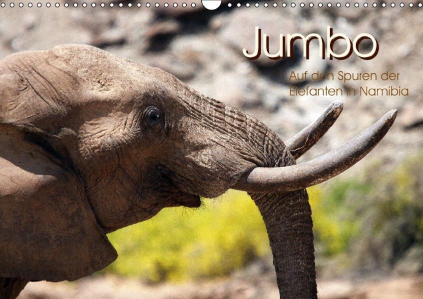Jumbo  Auf den Spuren der Elefanten in Namibia (Wandkalender 2017 DIN A3 quer) - Coverbild