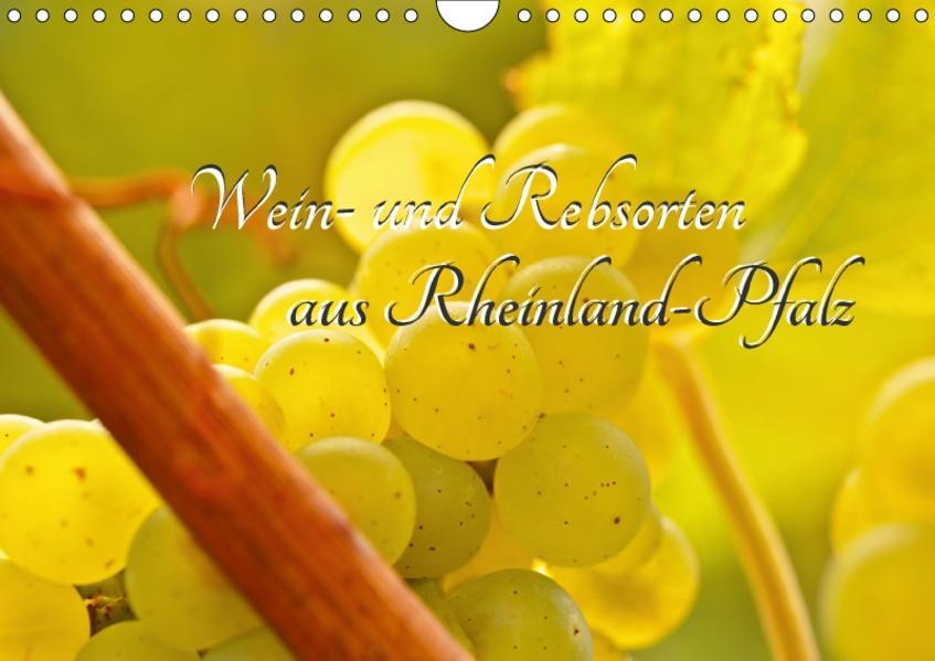 Wein- und Rebsorten aus Rheinland-Pfalz (Wandkalender 2017 DIN A4 quer) - Coverbild