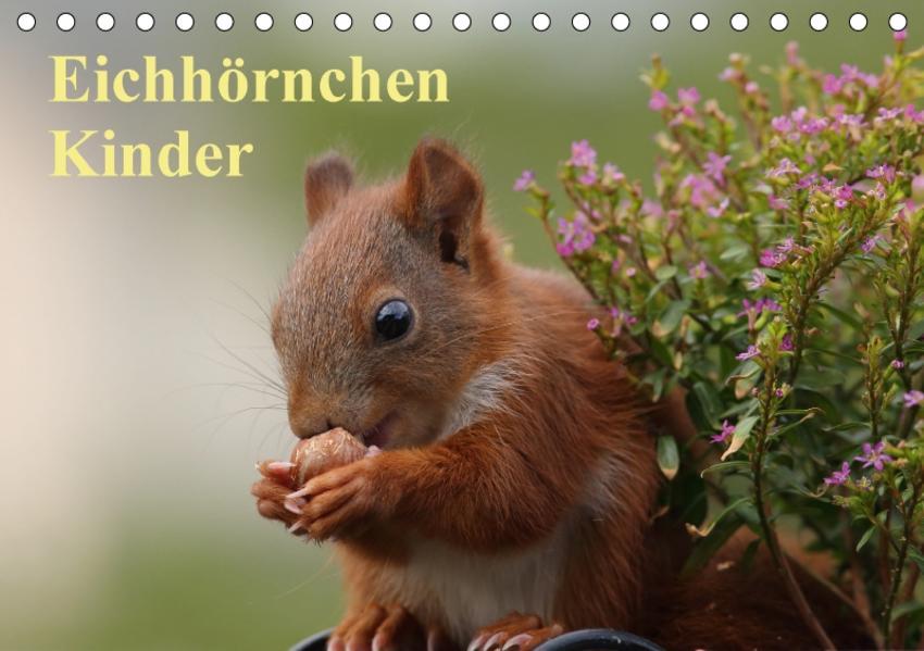 Eichhörnchen Kinder (Tischkalender 2017 DIN A5 quer) - Coverbild