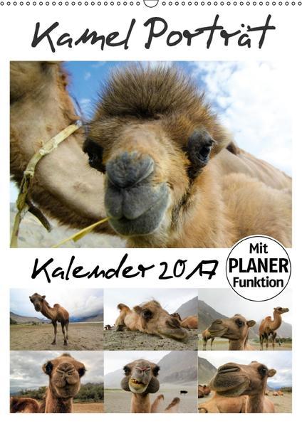Kamel Porträt (Wandkalender 2017 DIN A2 hoch) - Coverbild