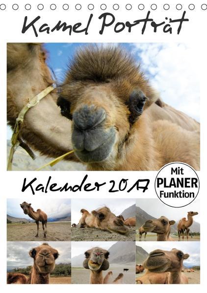 Kamel Porträt (Tischkalender 2017 DIN A5 hoch) - Coverbild