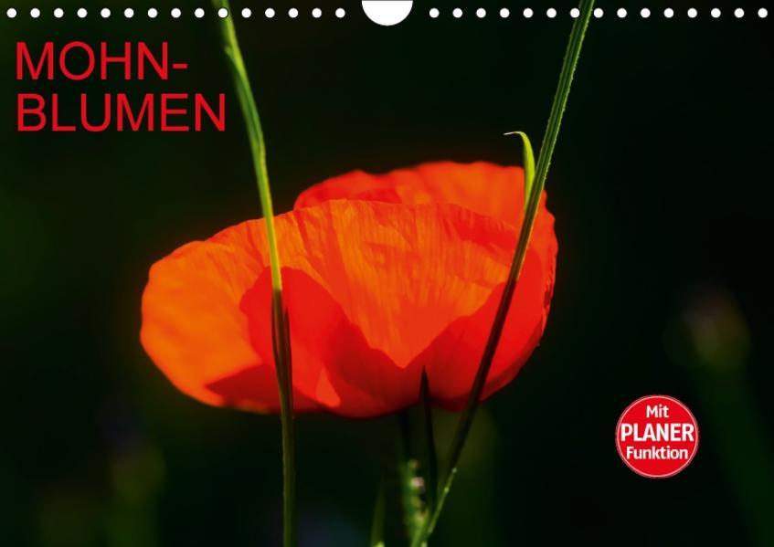 Mohnblumen (Wandkalender 2017 DIN A4 quer) - Coverbild