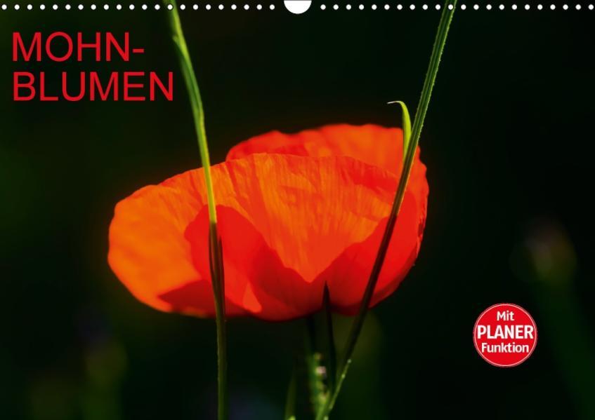 Mohnblumen (Wandkalender 2017 DIN A3 quer) - Coverbild