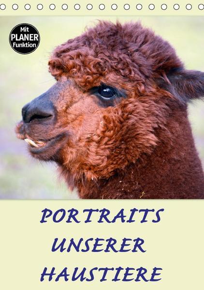 Portraits unserer Haustiere (Tischkalender 2017 DIN A5 hoch) - Coverbild