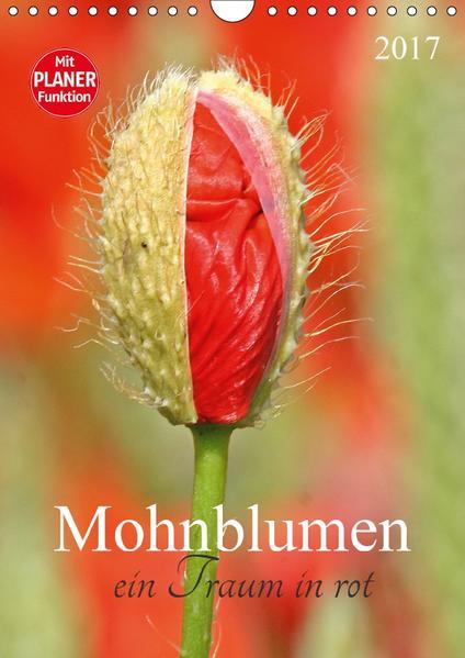 Mohnblumen-ein Traum in rot (Wandkalender 2017 DIN A4 hoch) - Coverbild
