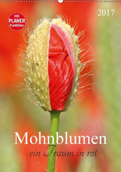 Mohnblumen-ein Traum in rot (Wandkalender 2017 DIN A2 hoch) - Coverbild