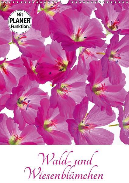 Wald- und Wiesenblümchen (Wandkalender 2017 DIN A3 hoch) - Coverbild