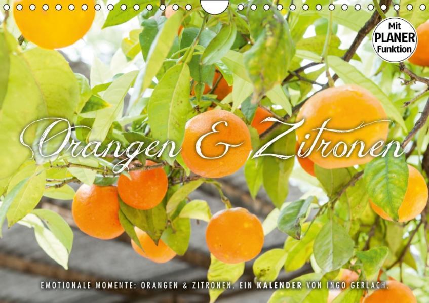 Emotionale Momente: Orangen und Zitronen. (Wandkalender 2017 DIN A4 quer) - Coverbild