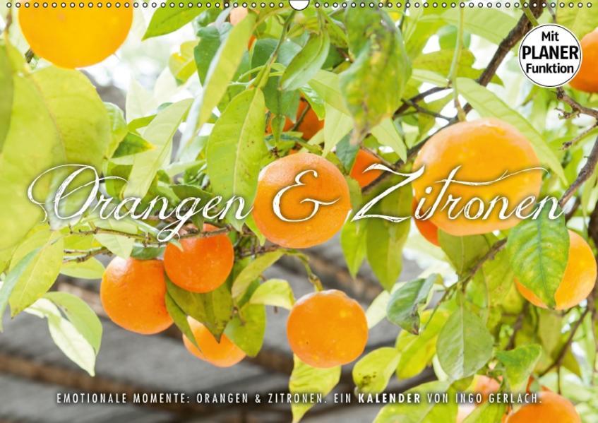 Emotionale Momente: Orangen und Zitronen. (Wandkalender 2017 DIN A2 quer) - Coverbild