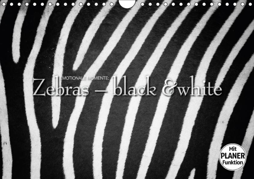 Emotionale Momente: Zebras - black and white. (Wandkalender 2017 DIN A4 quer) - Coverbild