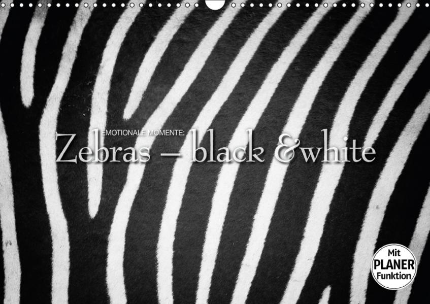 Emotionale Momente: Zebras - black and white. (Wandkalender 2017 DIN A3 quer) - Coverbild