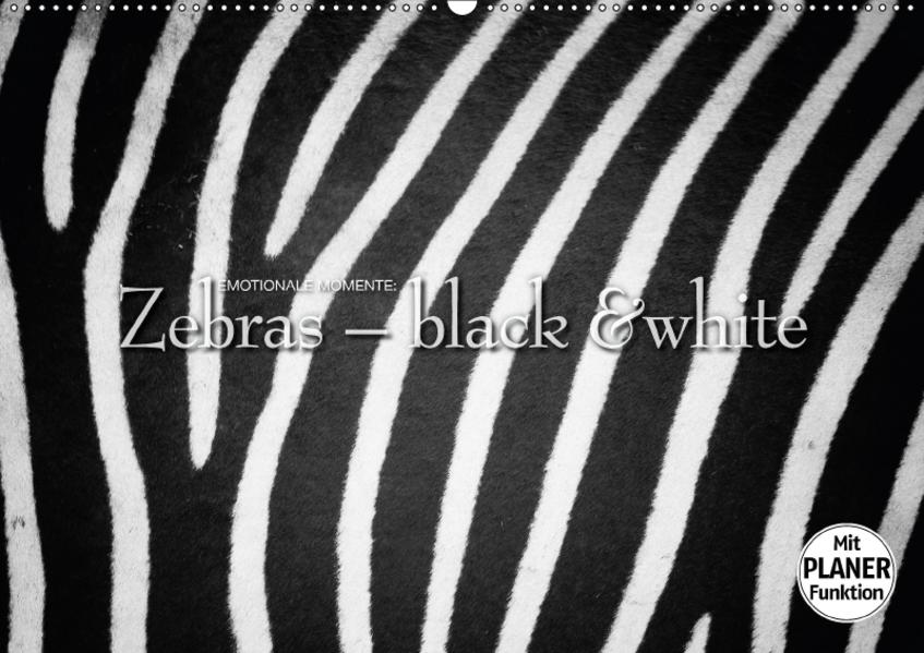 Emotionale Momente: Zebras - black and white. (Wandkalender 2017 DIN A2 quer) - Coverbild