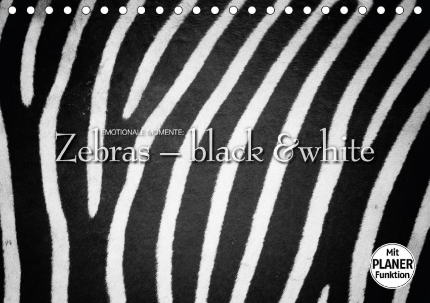 Emotionale Momente: Zebras - black and white. (Tischkalender 2017 DIN A5 quer) - Coverbild