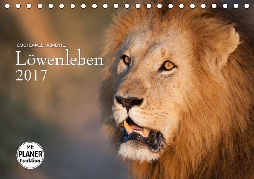 Emotionale Momente: Löwenleben (Tischkalender 2017 DIN A5 quer) - Coverbild