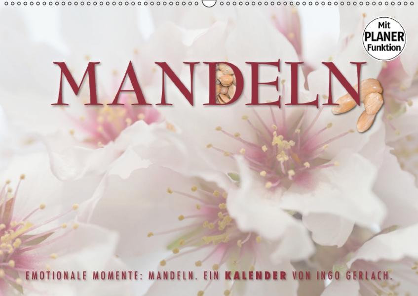 Emotionale Momente: Mandeln (Wandkalender 2017 DIN A2 quer) - Coverbild