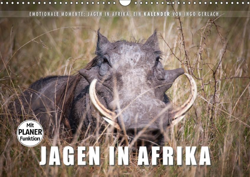 Emotionale Momente: Jagen in Afrika. (Wandkalender 2017 DIN A3 quer) - Coverbild