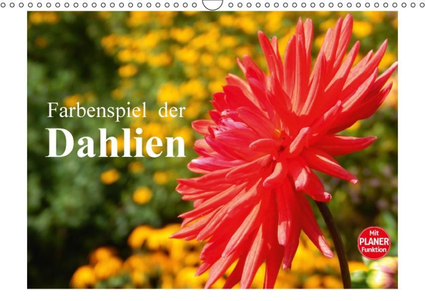 Farbenspiel der Dahlien (Wandkalender 2017 DIN A3 quer) - Coverbild