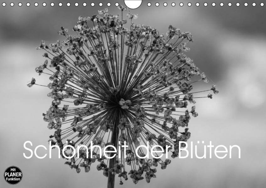 Schönheit der Blüten (Wandkalender 2017 DIN A4 quer) - Coverbild