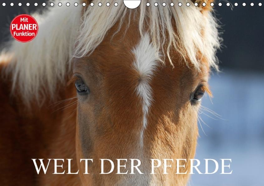 Welt der Pferde (Wandkalender 2017 DIN A4 quer) - Coverbild