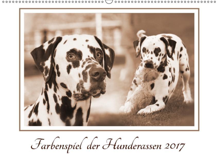 Farbenspiel der Hunderassen (Wandkalender 2017 DIN A2 quer) - Coverbild