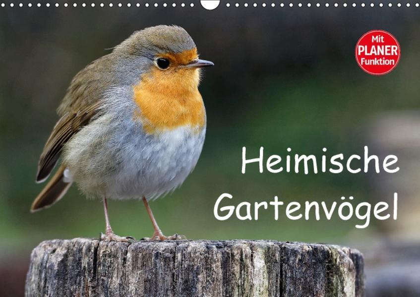 Heimische Gartenvögel (Wandkalender 2017 DIN A3 quer) - Coverbild