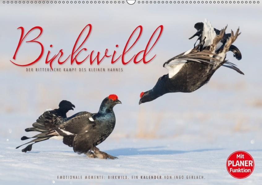 Emotionale Momente: Birkwild (Wandkalender 2017 DIN A2 quer) - Coverbild