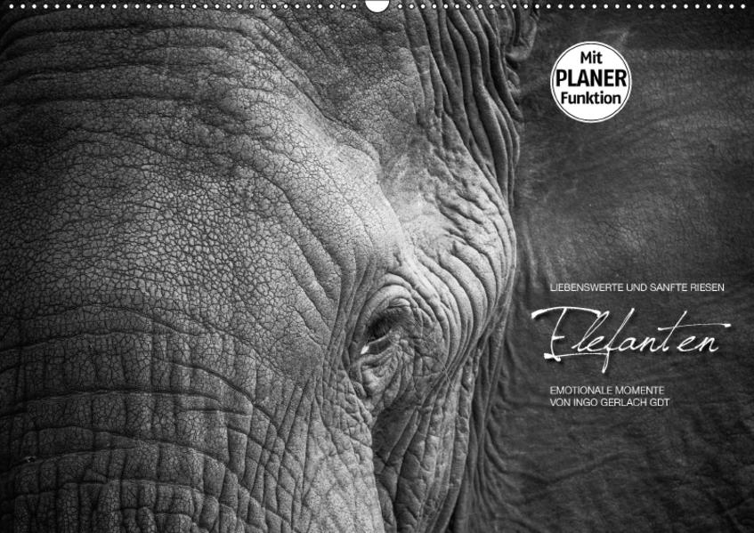 Emotionale Momente: Elefanten in black and white (Wandkalender 2017 DIN A2 quer) - Coverbild