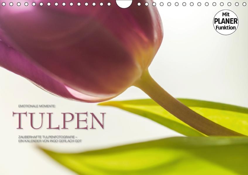Emotionale Momente: Tulpen (Wandkalender 2017 DIN A4 quer) - Coverbild
