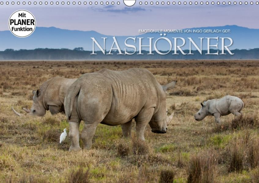Emotionale Momente: Nashörner (Wandkalender 2017 DIN A3 quer) - Coverbild