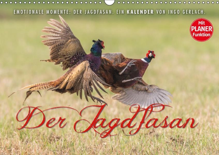 Emotionale Momente: Der Jagdfasan. (Wandkalender 2017 DIN A3 quer) - Coverbild