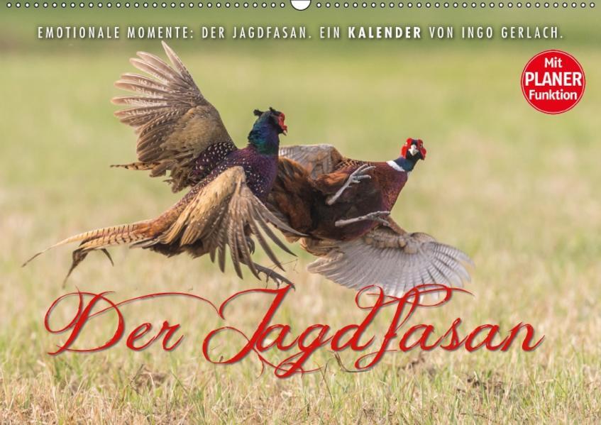 Emotionale Momente: Der Jagdfasan. (Wandkalender 2017 DIN A2 quer) - Coverbild