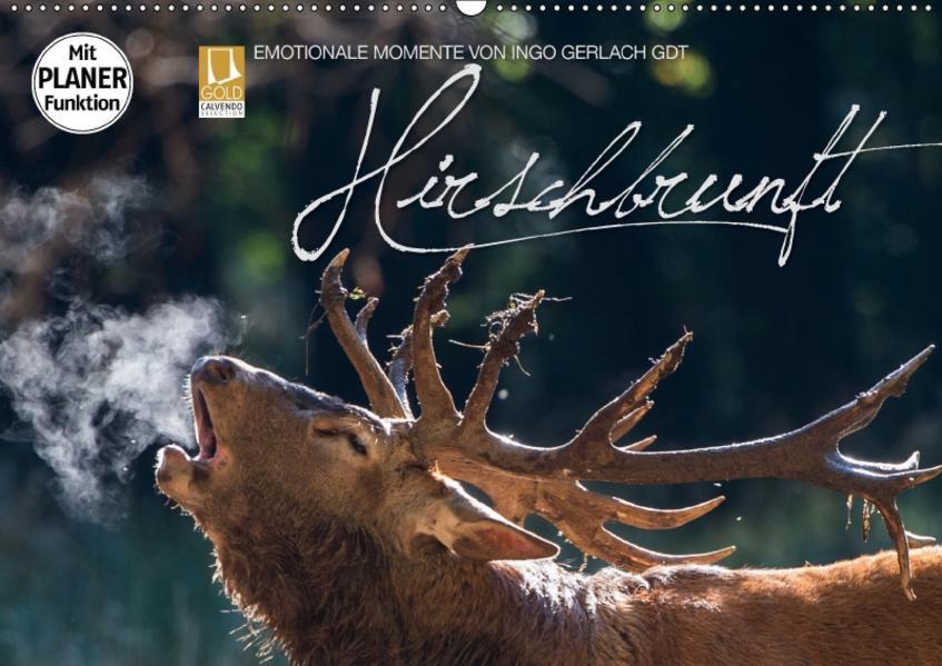 Emotionale Momente: Hirschbrunft (Wandkalender 2017 DIN A2 quer) - Coverbild