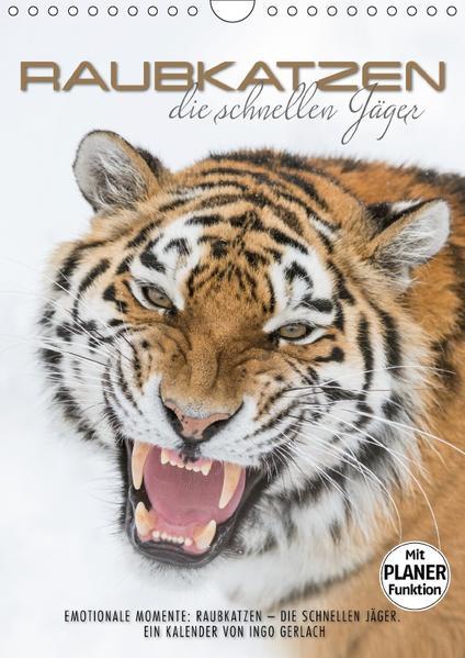 Emotionale Momente: Raubkatzen - die schnellen Jäger. (Wandkalender 2017 DIN A4 hoch) - Coverbild