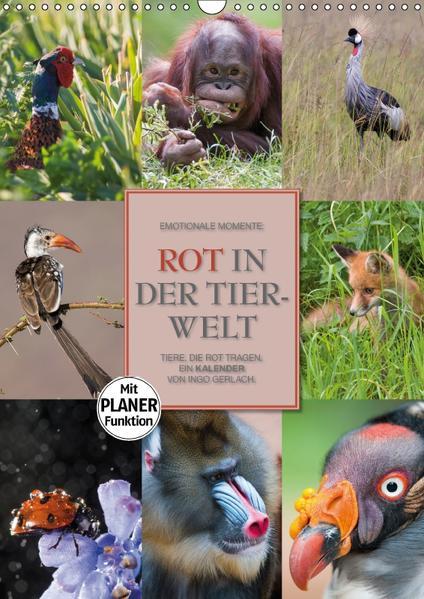 Emotionale Momente: Rot in der Tierwelt (Wandkalender 2017 DIN A3 hoch) - Coverbild